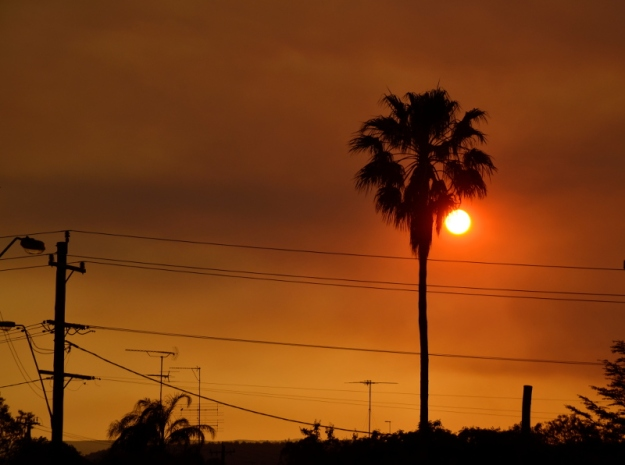 bushfire sunset